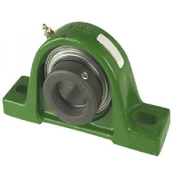 RASE65-214 Pillow Block Bearings