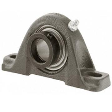 RAK 1/2 NT Pillow Block Bearings