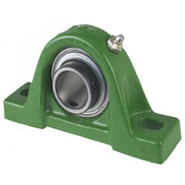 RASEY15 Pillow Block Bearings