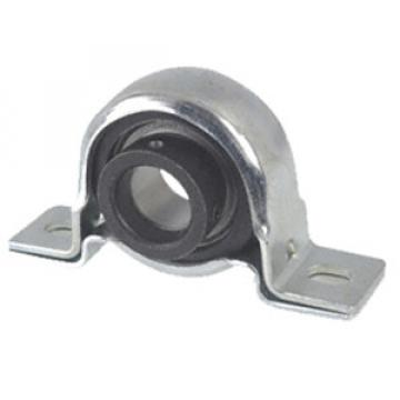 RPB30 Pillow Block Bearings